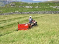 brush seed harvester nethering